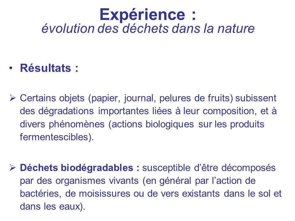 Expérience : évolution des déchets dans la nature