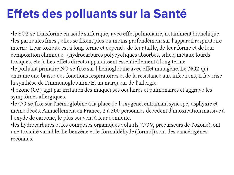 Effets des polluants sur la Santé