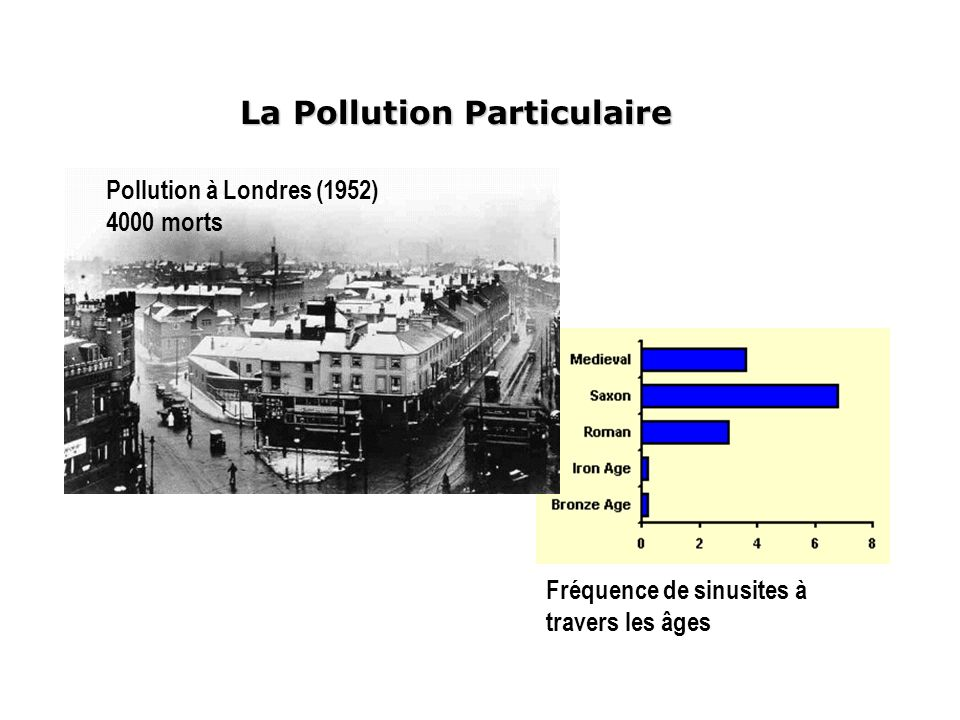 La Pollution Particulaire