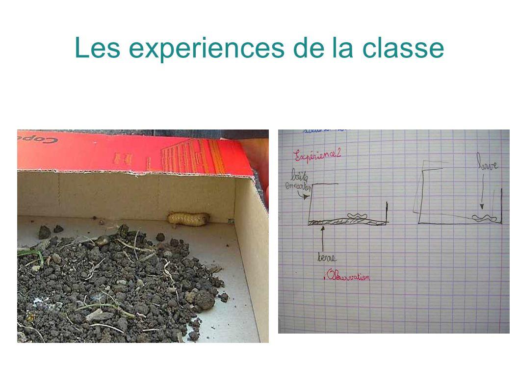 Les experiences de la classe