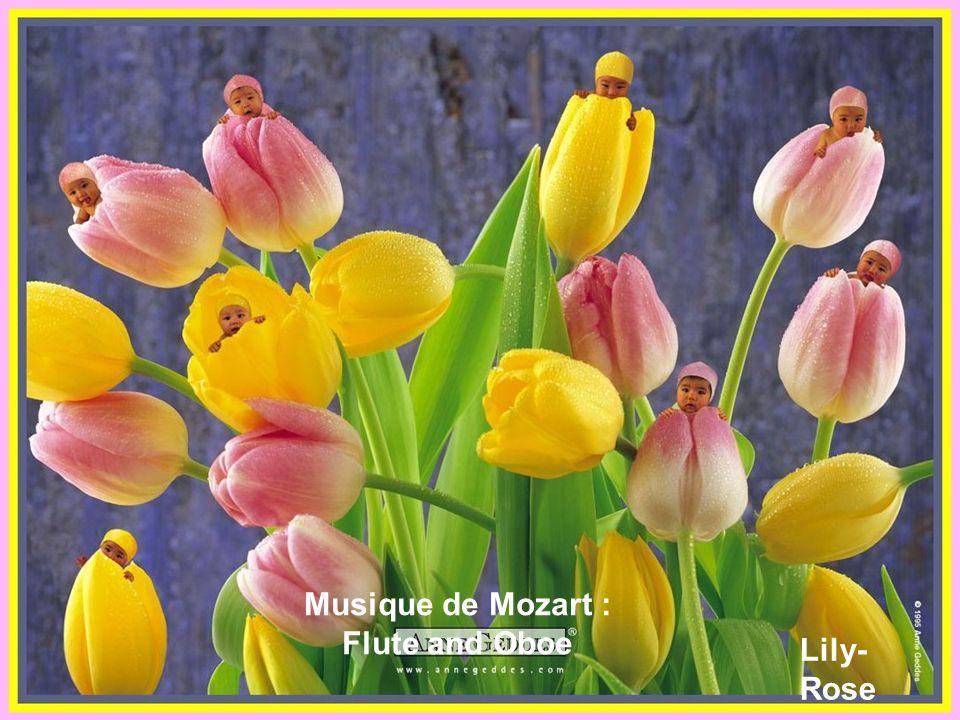 Musique de Mozart : Flute and Oboe