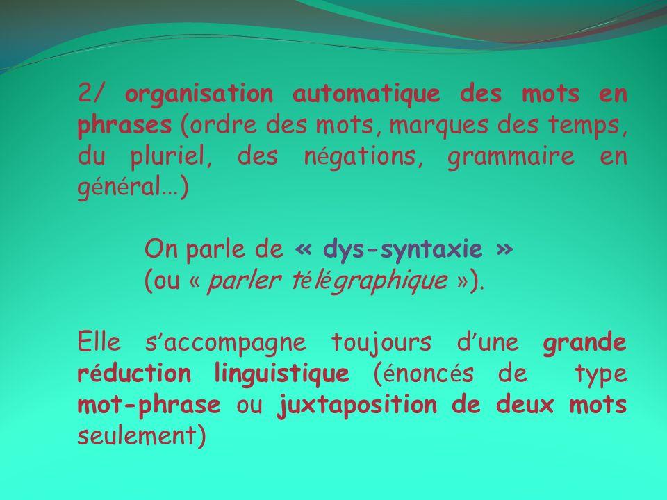 2/ organisation automatique des mots en phrases (ordre des mots, marques des temps, du pluriel, des négations, grammaire en général…)