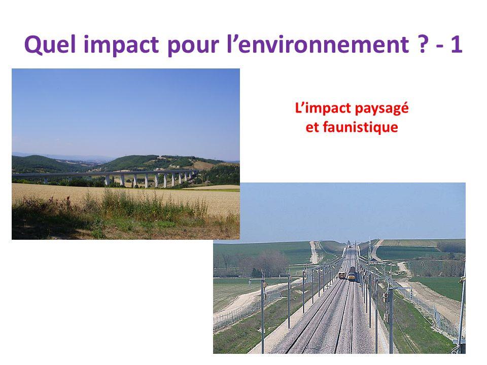 Quel impact pour l'environnement - 1