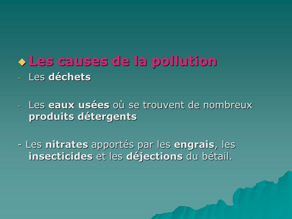 Les causes de la pollution