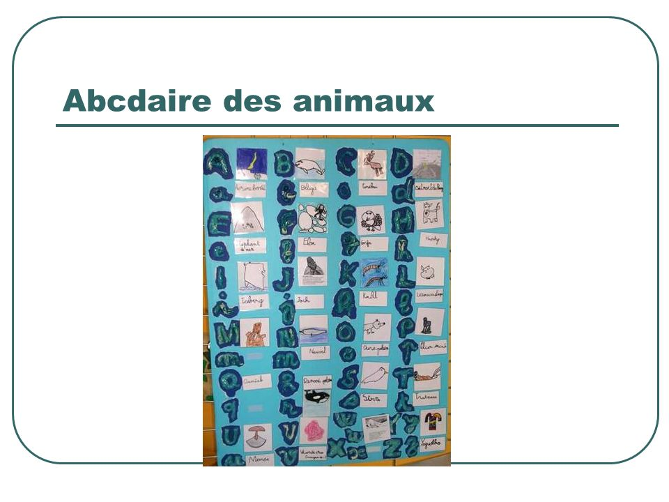 Abcdaire des animaux