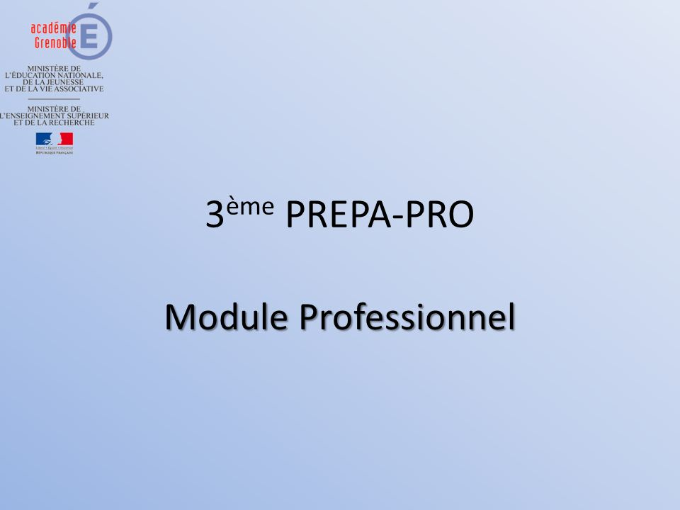 3ème PREPA-PRO Module Professionnel