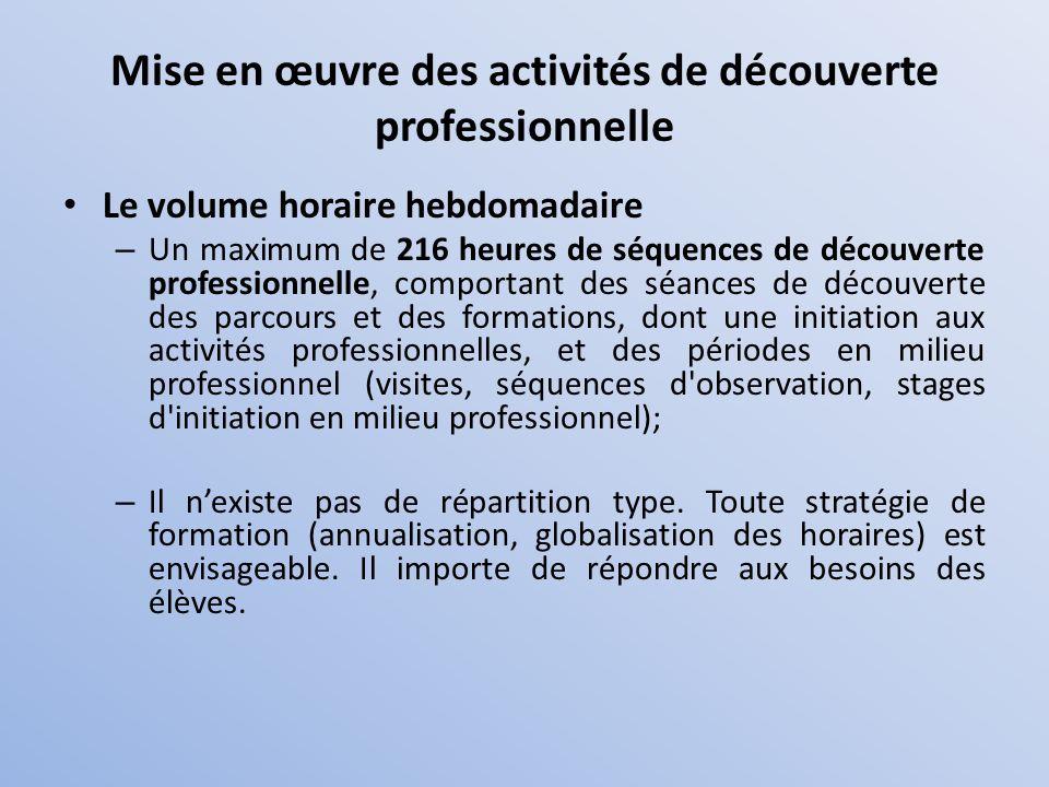 Mise en œuvre des activités de découverte professionnelle
