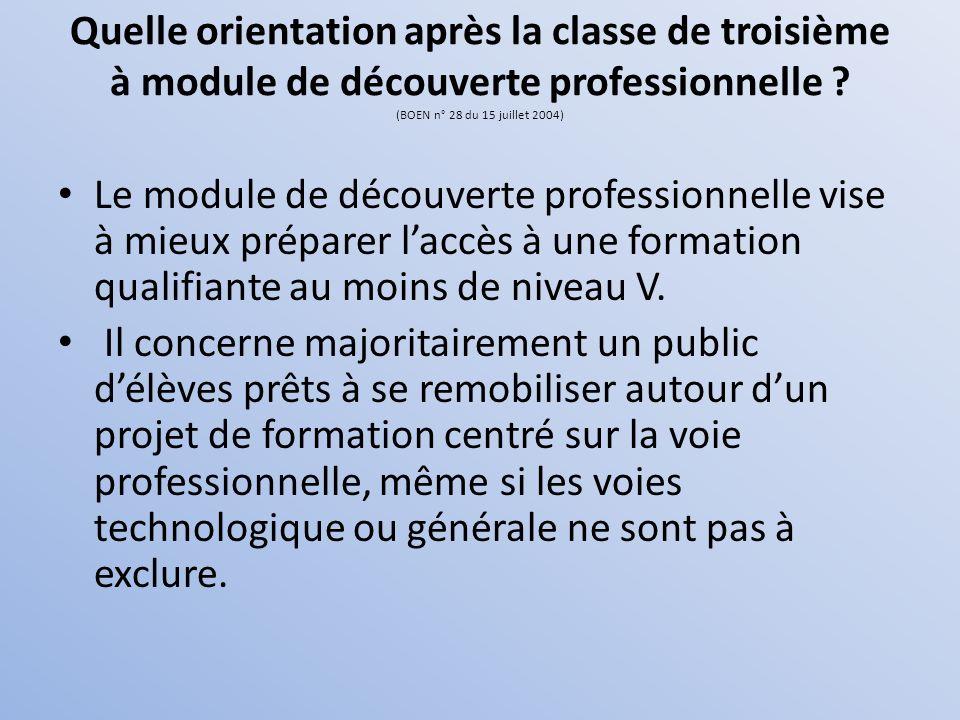 Quelle orientation après la classe de troisième à module de découverte professionnelle (BOEN n° 28 du 15 juillet 2004)