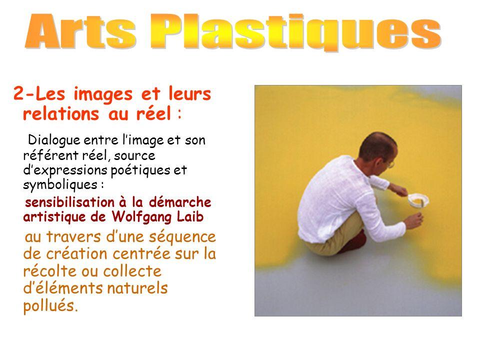 Arts Plastiques 2-Les images et leurs relations au réel :