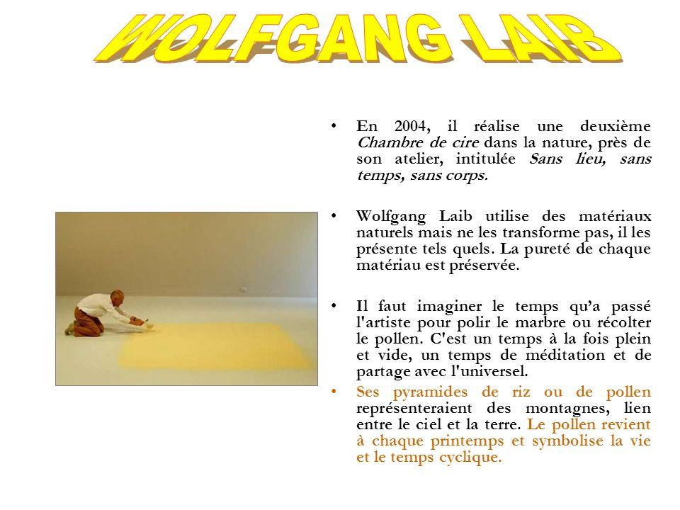WOLFGANG LAIB En 2004, il réalise une deuxième Chambre de cire dans la nature, près de son atelier, intitulée Sans lieu, sans temps, sans corps.