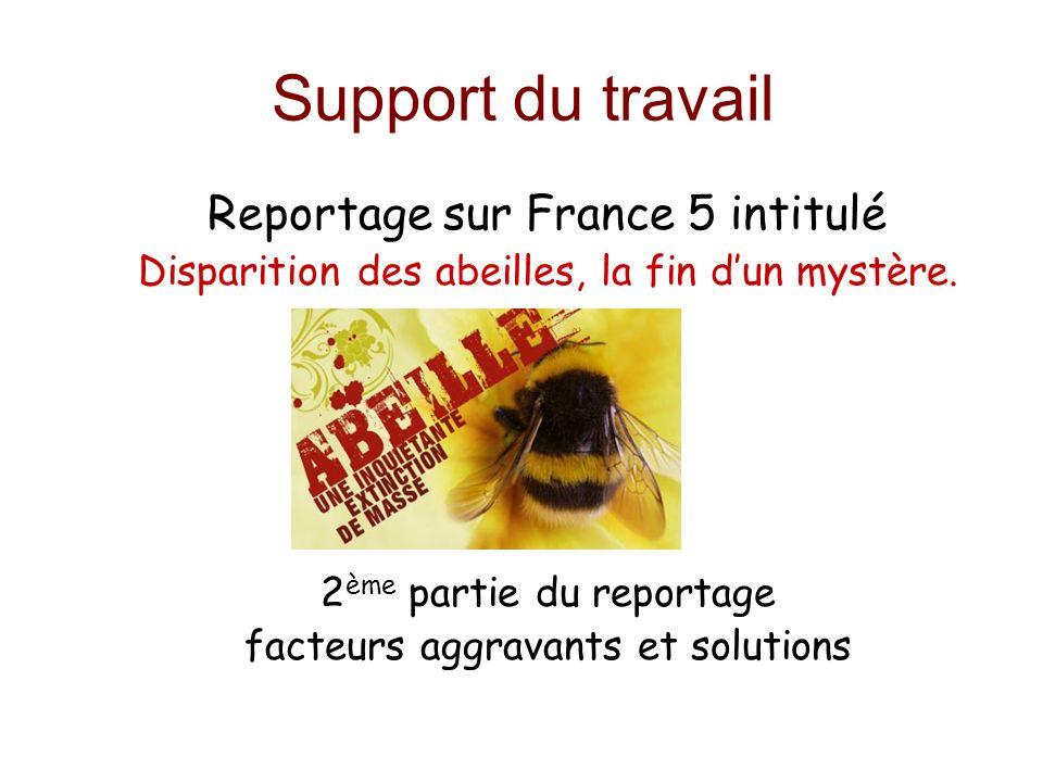 Support du travail Reportage sur France 5 intitulé