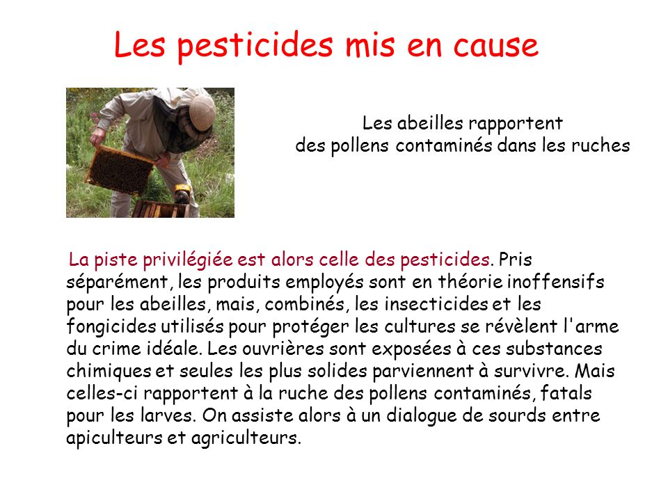 Les pesticides mis en cause
