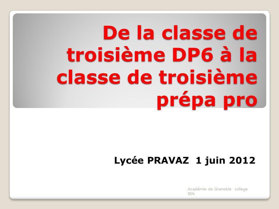 De la classe de troisième DP6 à la classe de troisième prépa pro