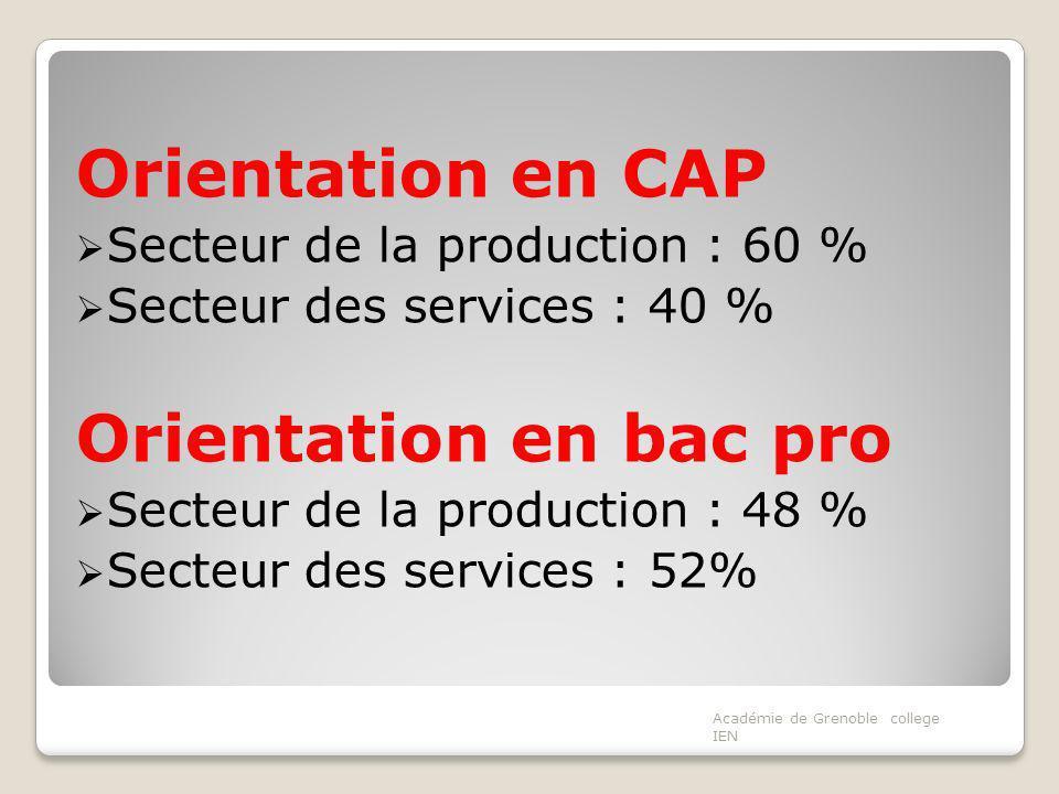 Orientation en CAP Orientation en bac pro