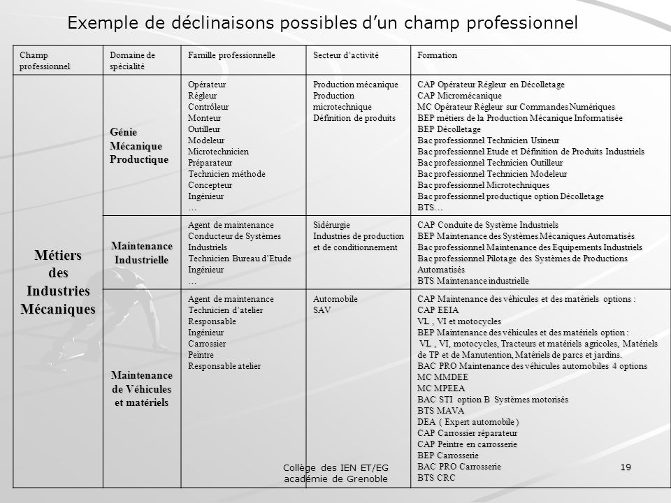 Exemple de déclinaisons possibles d'un champ professionnel