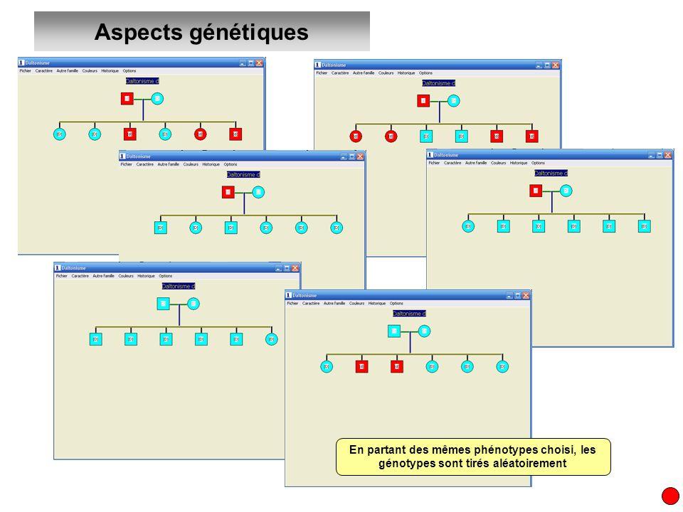 Aspects génétiques En partant des mêmes phénotypes choisi, les génotypes sont tirés aléatoirement