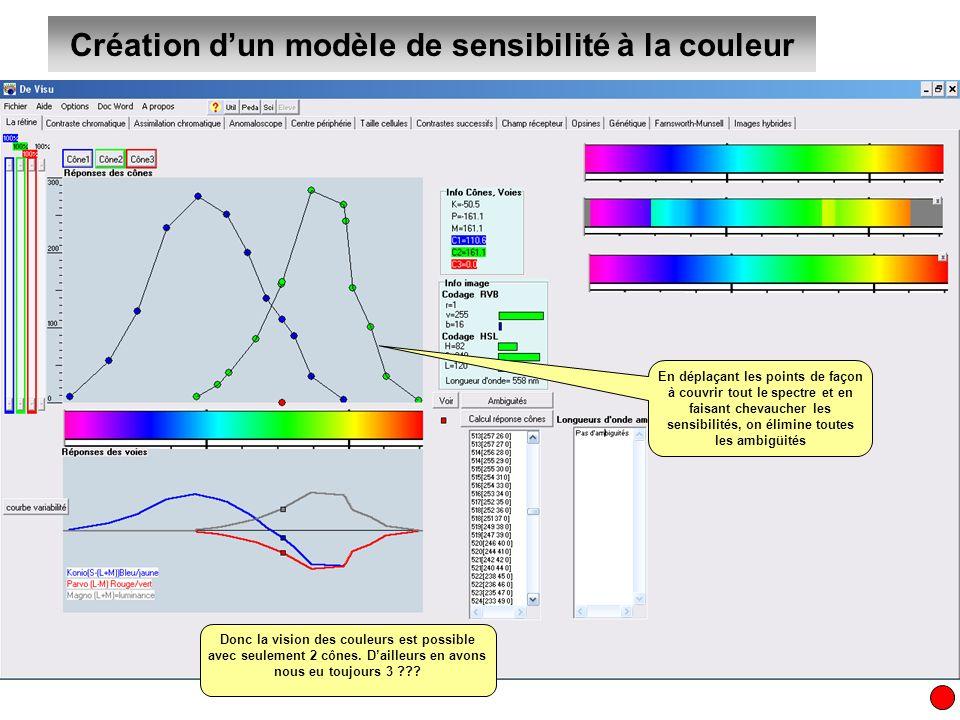 Création d'un modèle de sensibilité à la couleur
