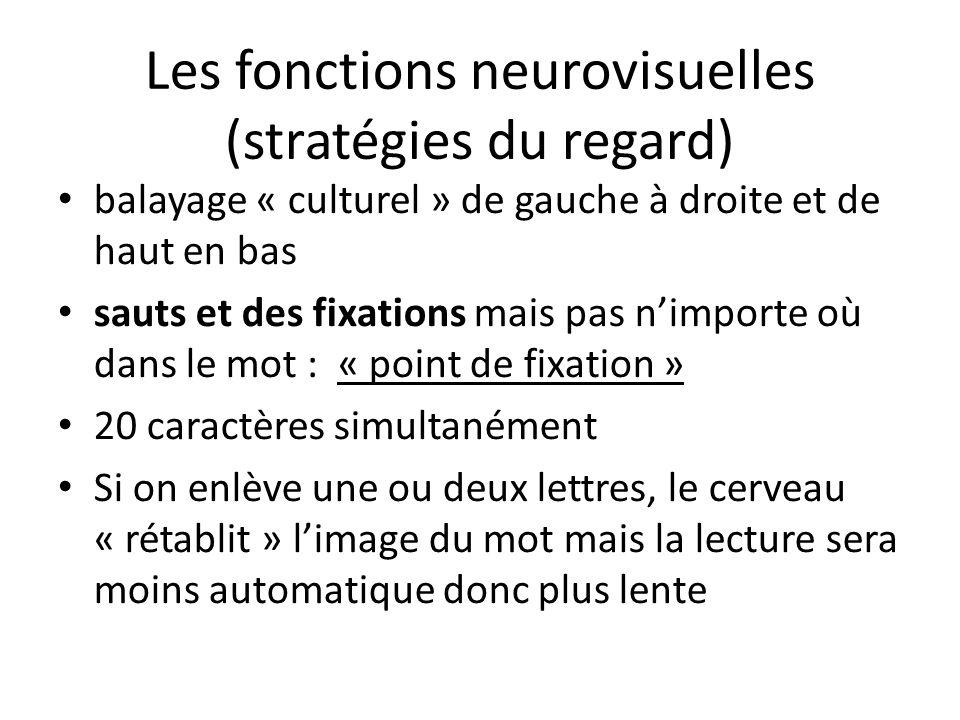 Les fonctions neurovisuelles (stratégies du regard)