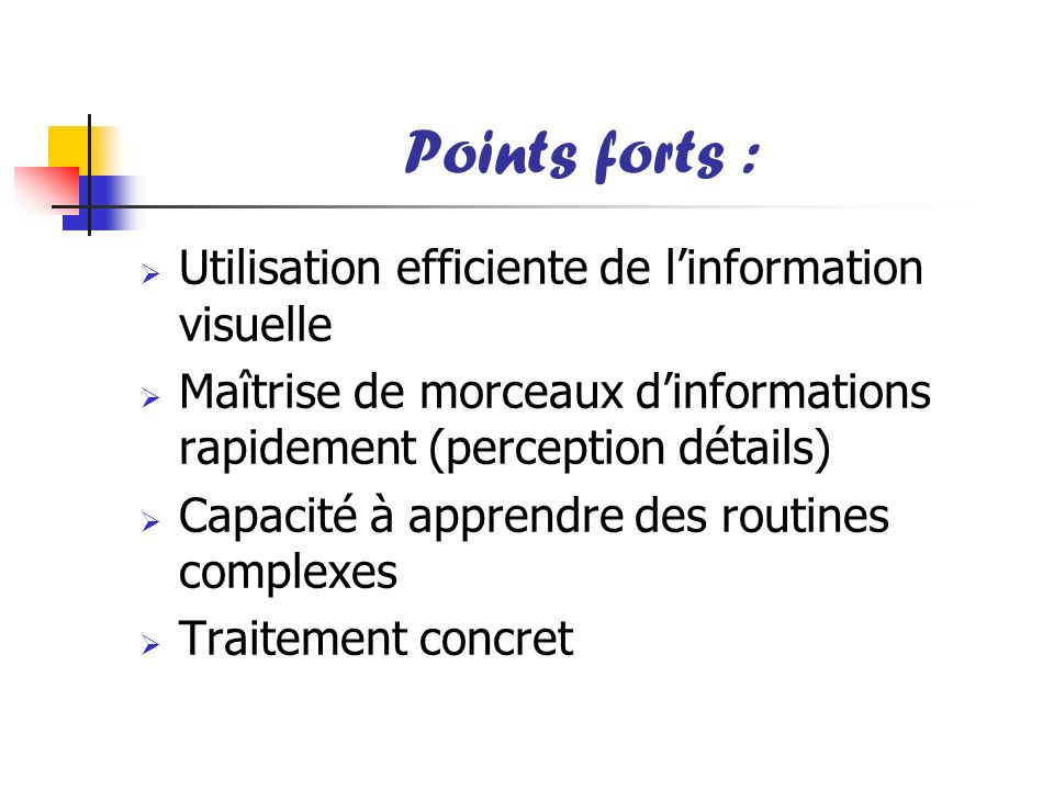 Points forts : Utilisation efficiente de l'information visuelle