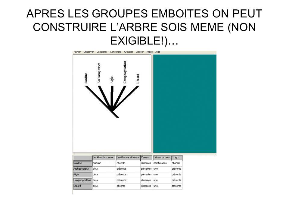 APRES LES GROUPES EMBOITES ON PEUT CONSTRUIRE L'ARBRE SOIS MEME (NON EXIGIBLE!)…