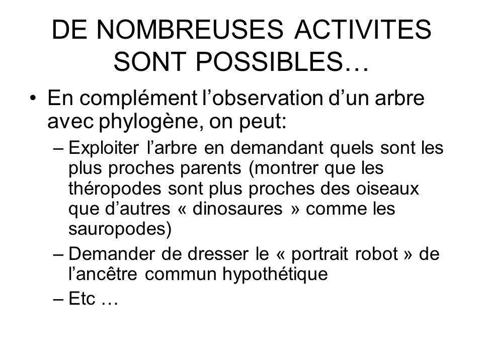 DE NOMBREUSES ACTIVITES SONT POSSIBLES…