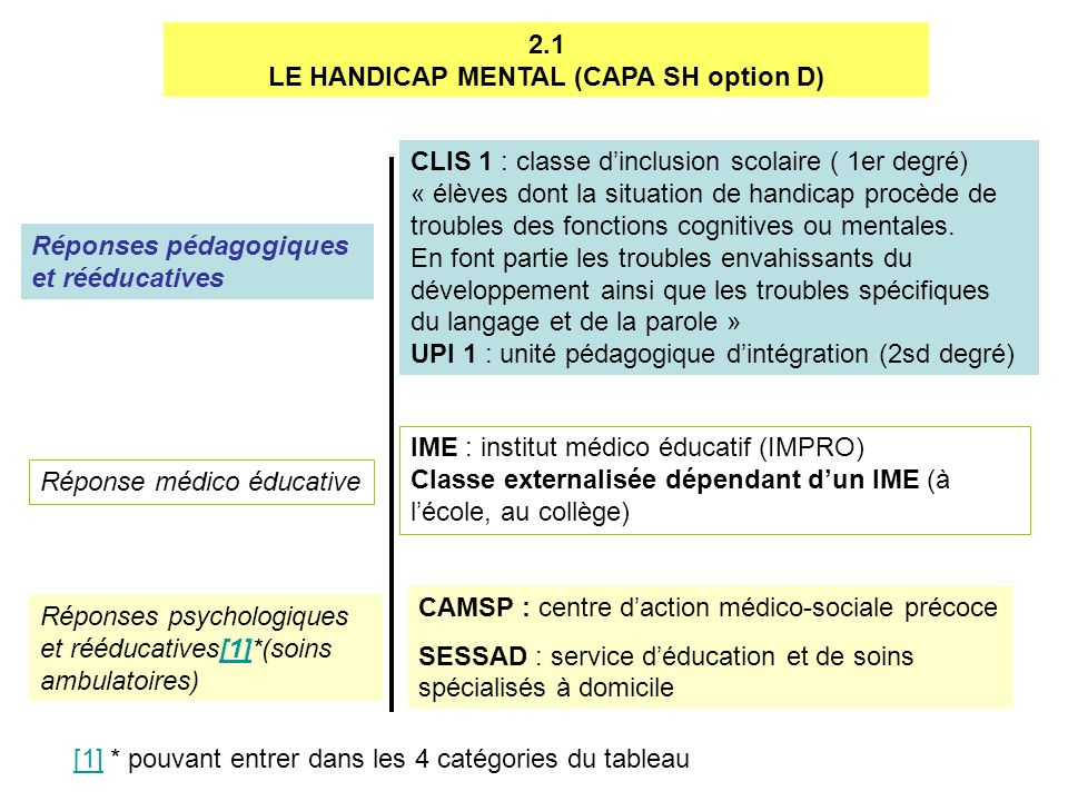 LE HANDICAP MENTAL (CAPA SH option D)