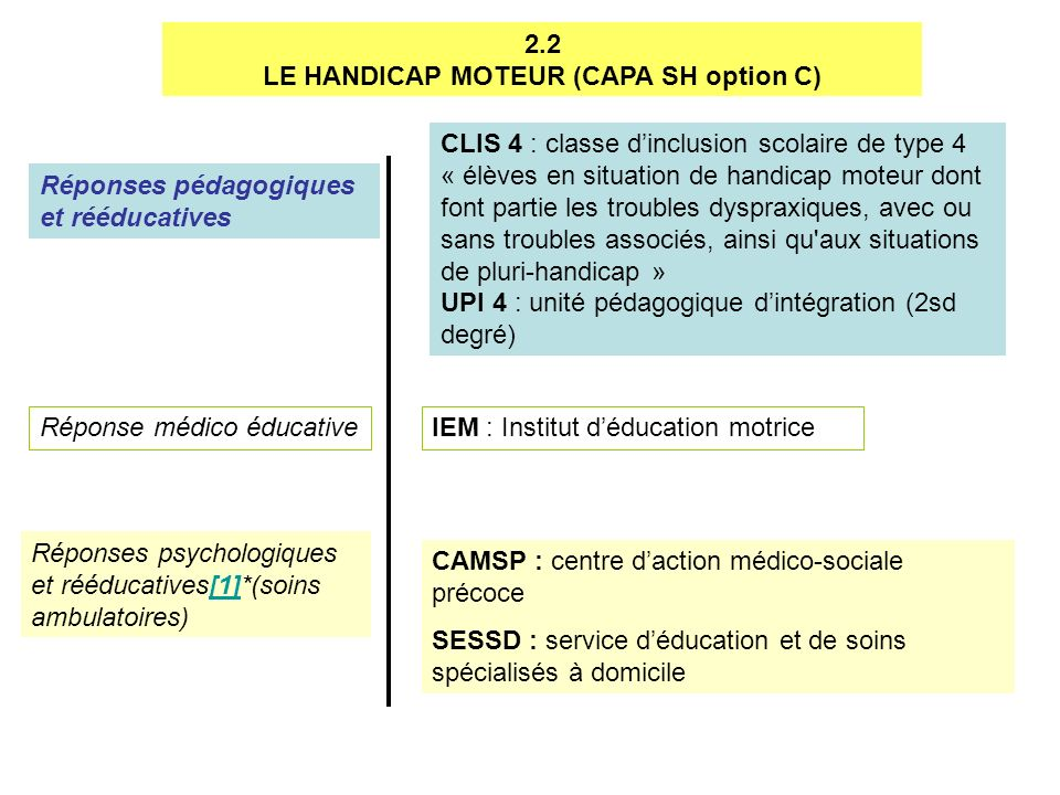 LE HANDICAP MOTEUR (CAPA SH option C)
