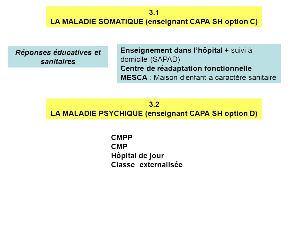 LA MALADIE SOMATIQUE (enseignant CAPA SH option C)