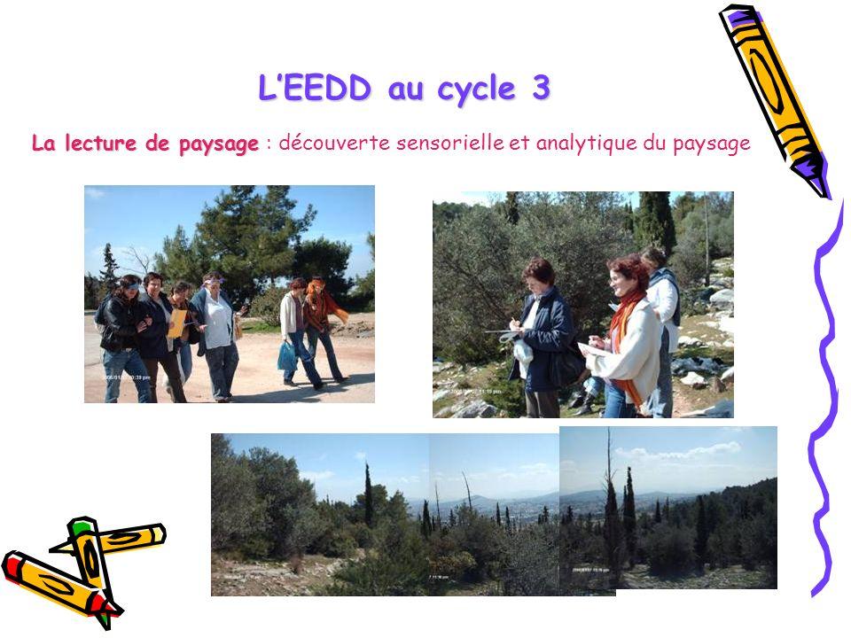 L'EEDD au cycle 3 La lecture de paysage : découverte sensorielle et analytique du paysage