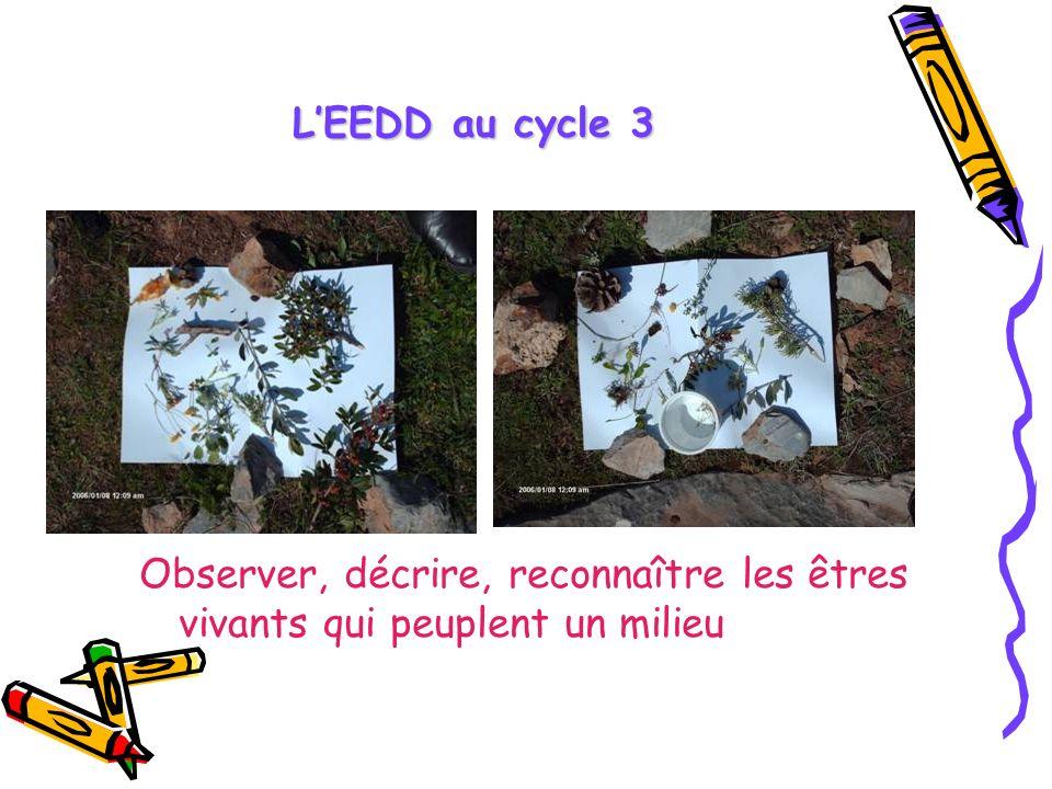 L'EEDD au cycle 3 Observer, décrire, reconnaître les êtres vivants qui peuplent un milieu