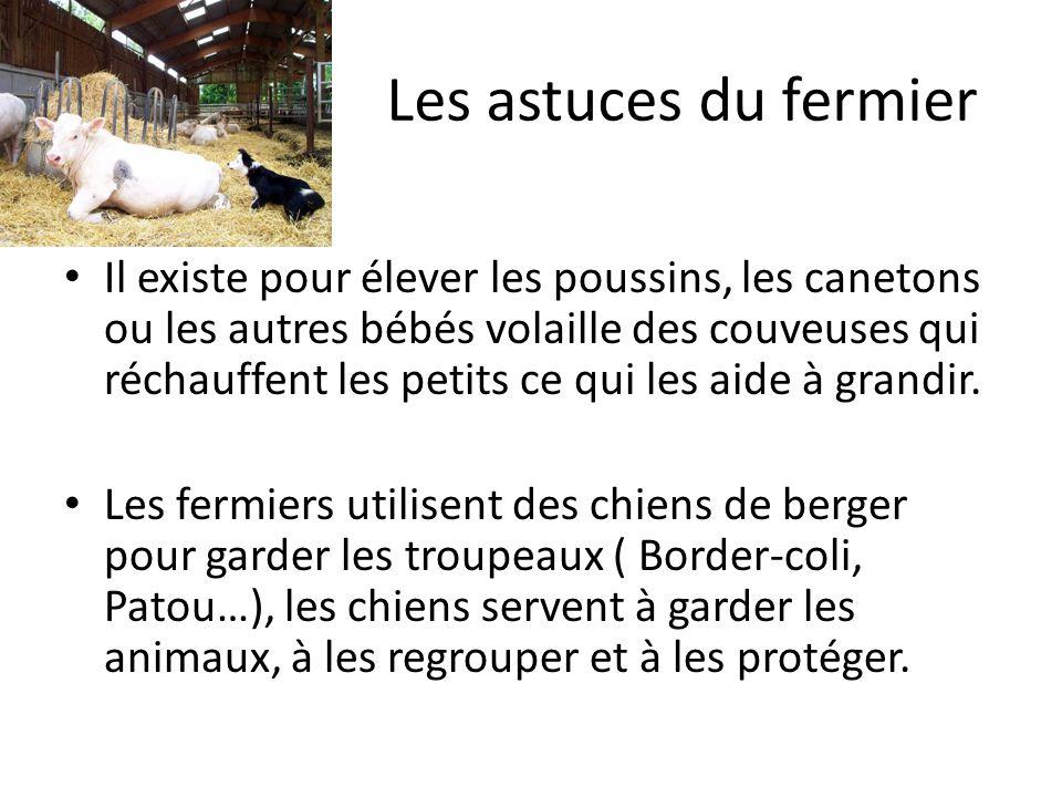 Les astuces du fermier