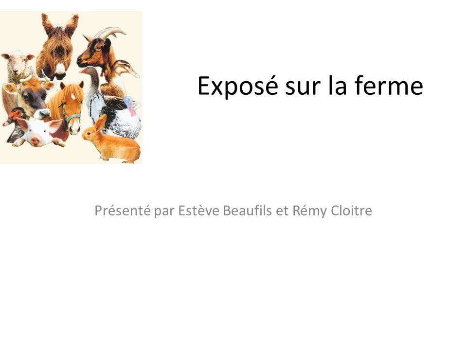 Présenté par Estève Beaufils et Rémy Cloitre