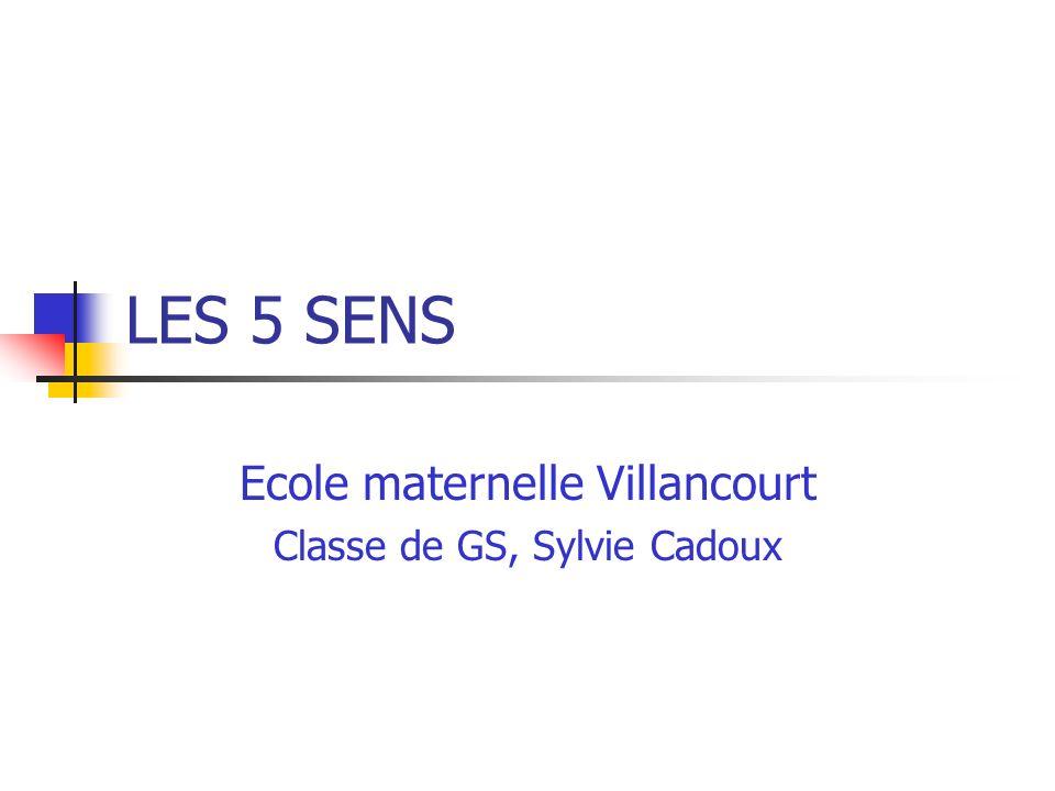Ecole maternelle Villancourt Classe de GS, Sylvie Cadoux