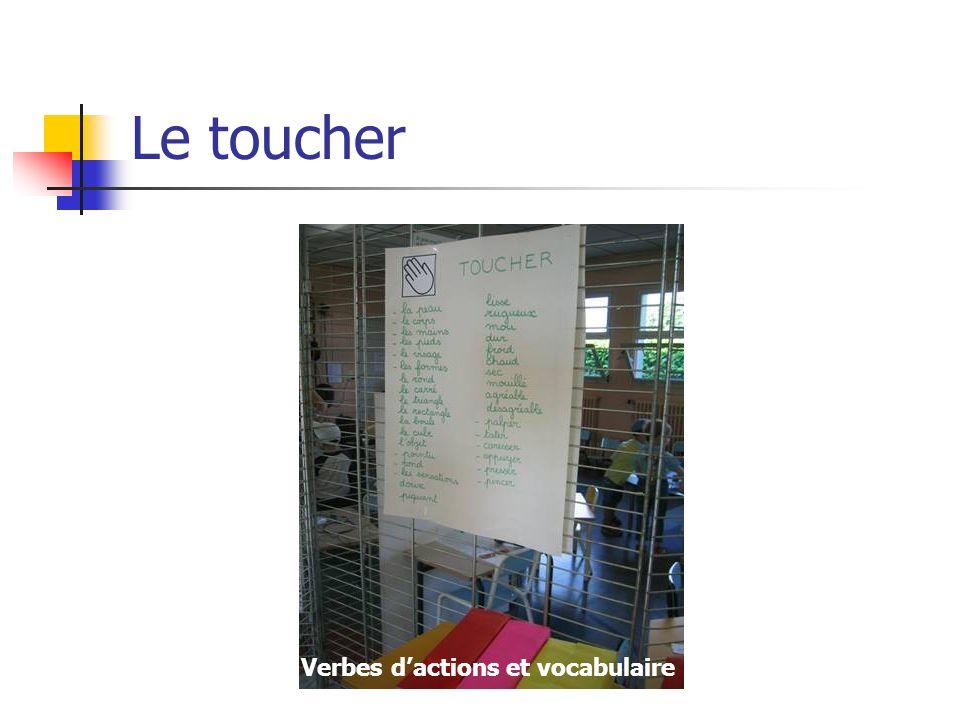 Le toucher Verbes d'actions et vocabulaire