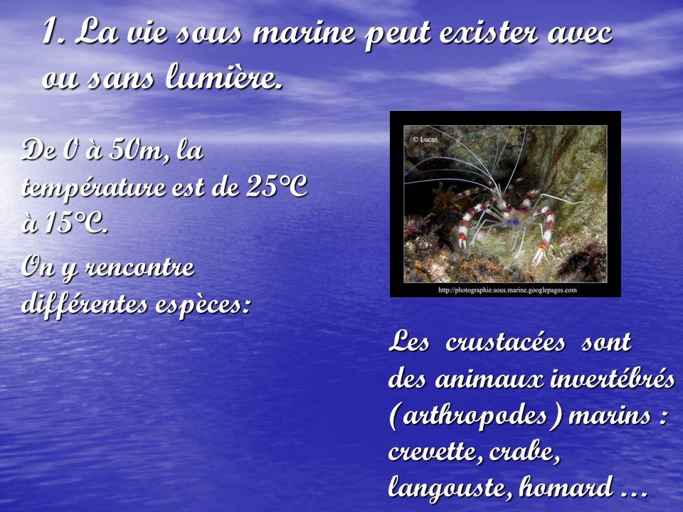 1. La vie sous marine peut exister avec ou sans lumière.