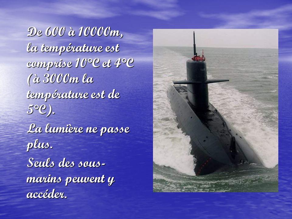 De 600 à 10000m, la température est comprise 10°C et 4°C (à 3000m la température est de 5°C).
