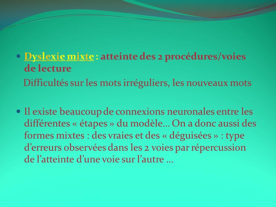 Dyslexie mixte : atteinte des 2 procédures/voies de lecture