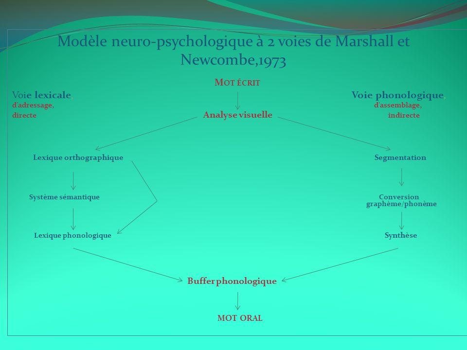 Modèle neuro-psychologique à 2 voies de Marshall et Newcombe,1973