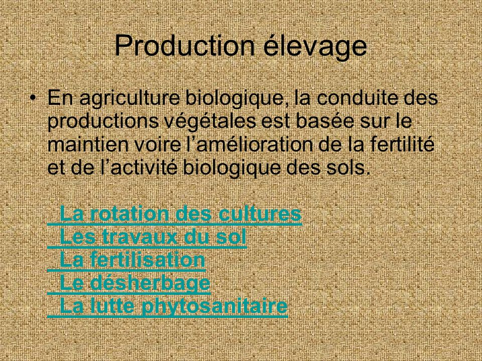 Production élevage