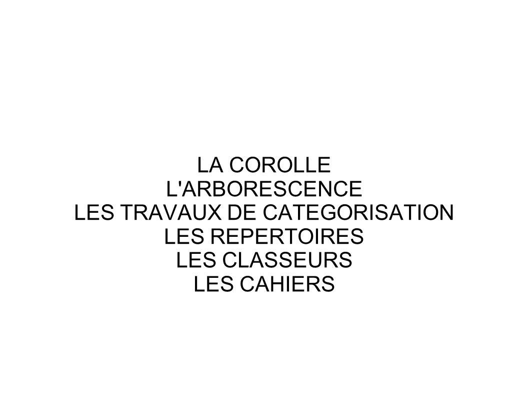 LES TRAVAUX DE CATEGORISATION