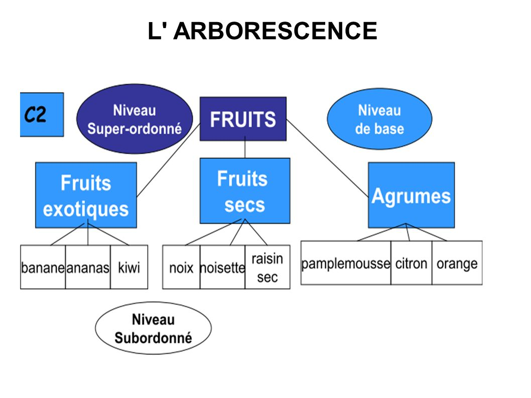 L ARBORESCENCE