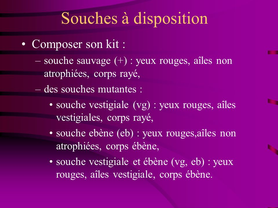 Souches à disposition Composer son kit :
