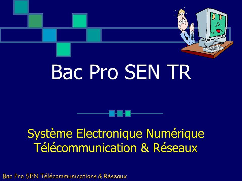 Système Electronique Numérique Télécommunication & Réseaux