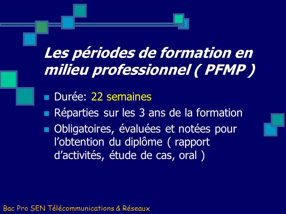 Les périodes de formation en milieu professionnel ( PFMP )
