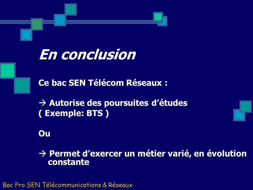 En conclusion Ce bac SEN Télécom Réseaux :