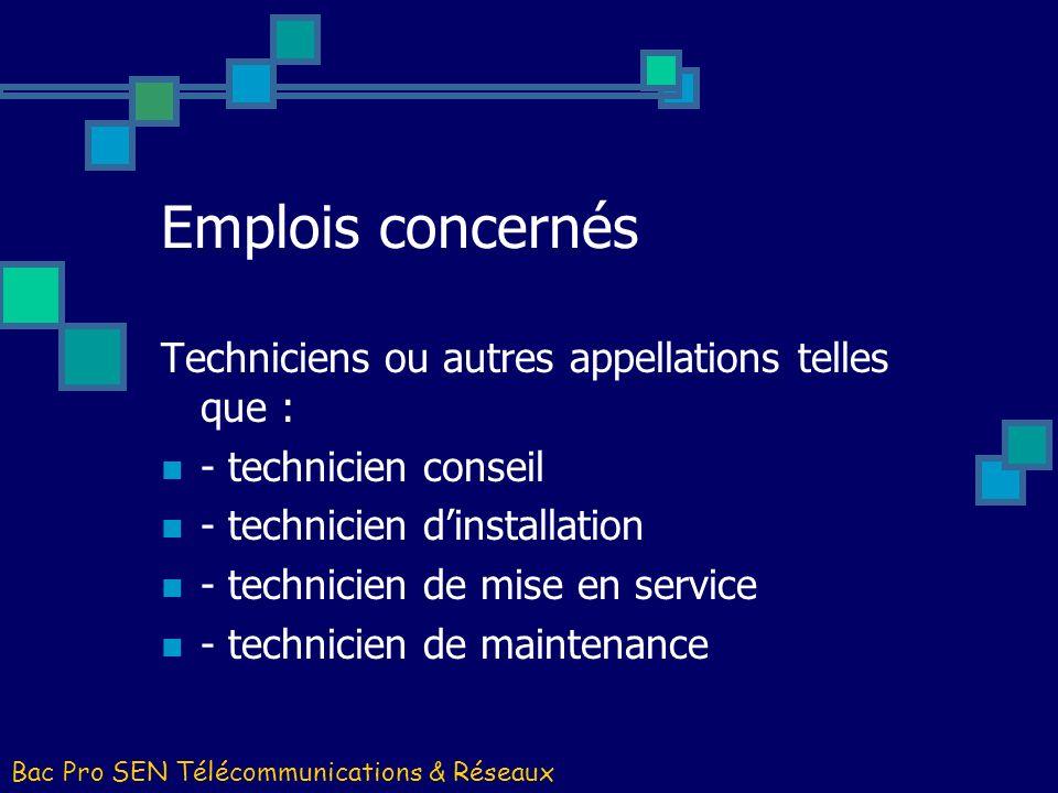 Emplois concernés Techniciens ou autres appellations telles que :