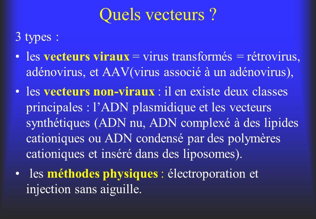 Quels vecteurs 3 types : les vecteurs viraux = virus transformés = rétrovirus, adénovirus, et AAV(virus associé à un adénovirus),