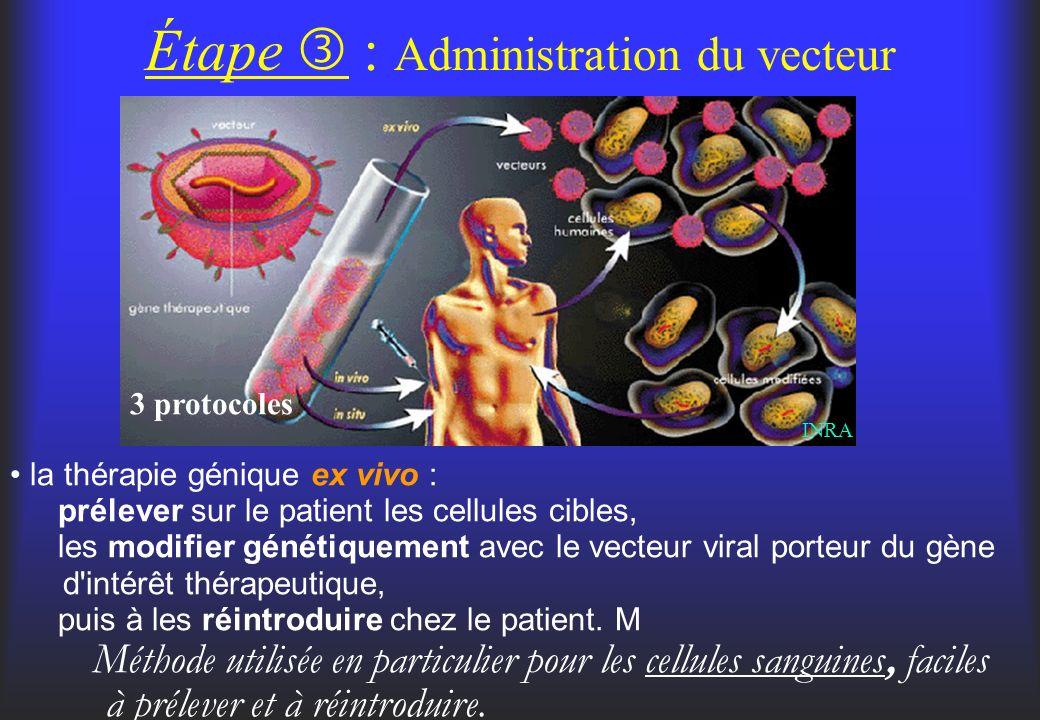 Étape  : Administration du vecteur
