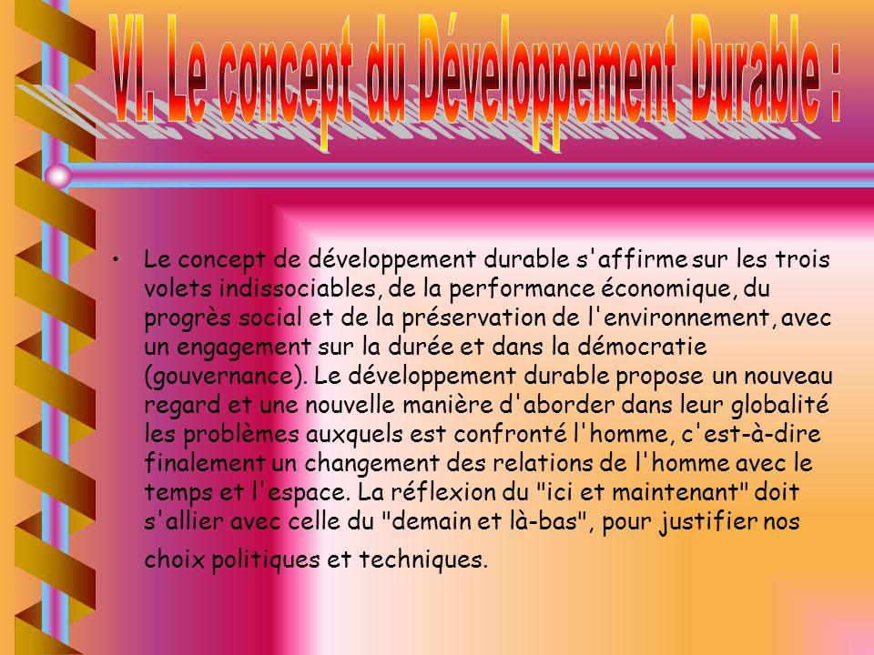 VI. Le concept du Développement Durable :