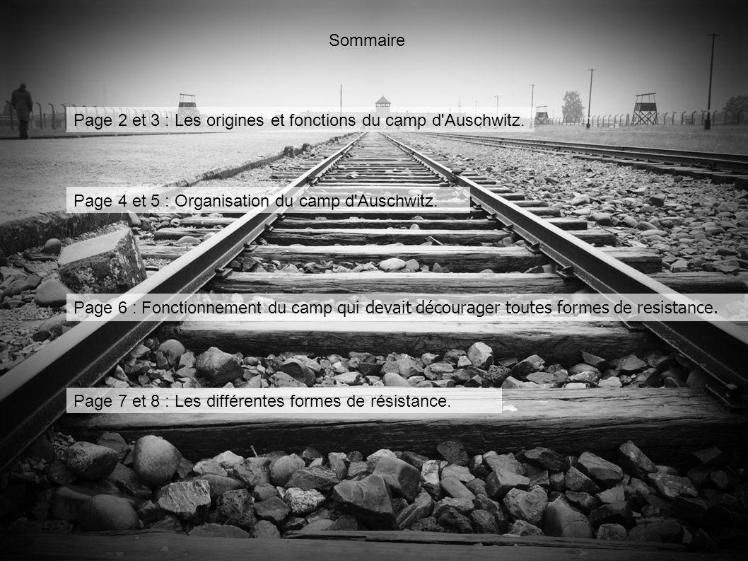 Sommaire Page 2 et 3 : Les origines et fonctions du camp d Auschwitz. Page 4 et 5 : Organisation du camp d Auschwitz.
